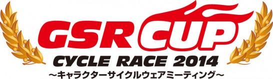 GSR CUP2014